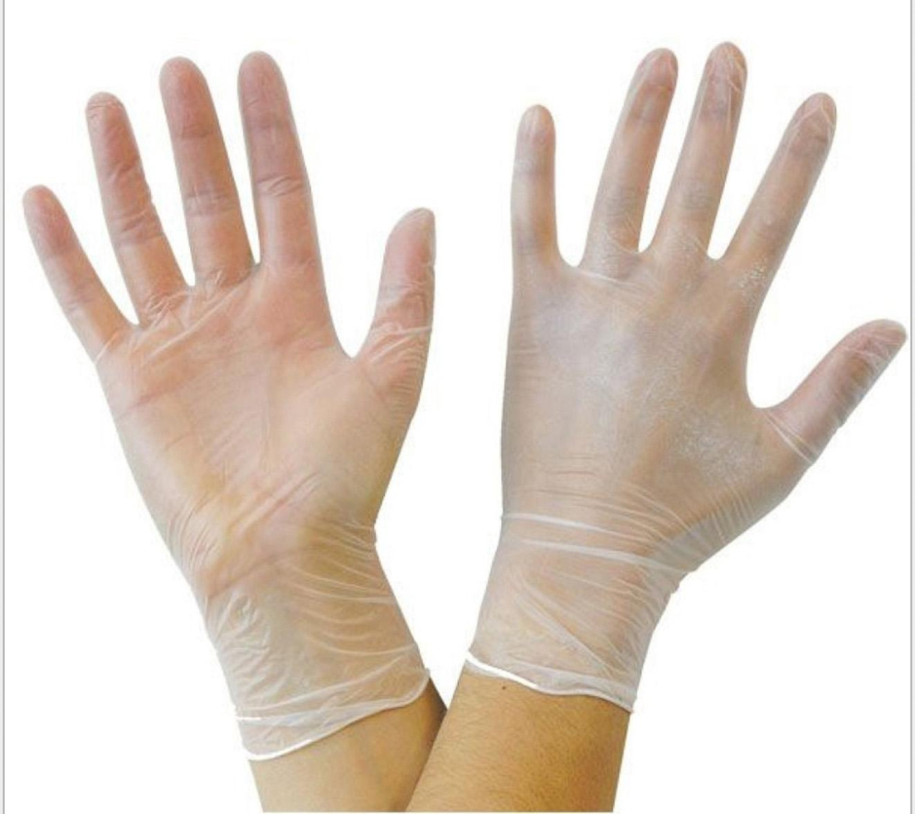 Powder free excellent quality catering use vinyl gloves